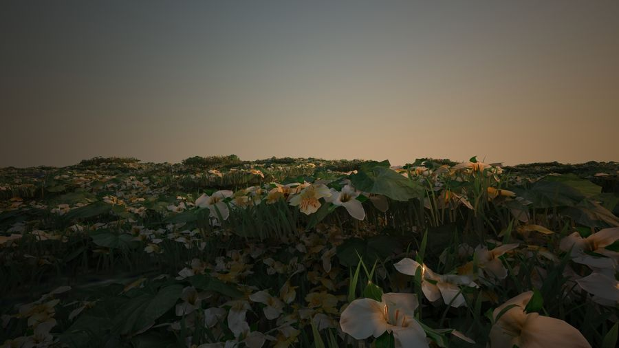 Bloemen voor het milieu royalty-free 3d model - Preview no. 6