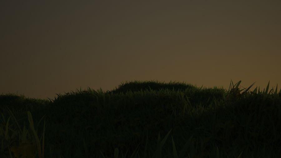 Gras voor het milieu royalty-free 3d model - Preview no. 7
