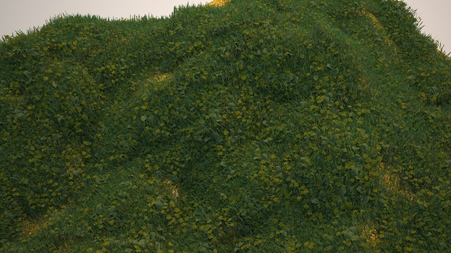 Gras voor het milieu royalty-free 3d model - Preview no. 8