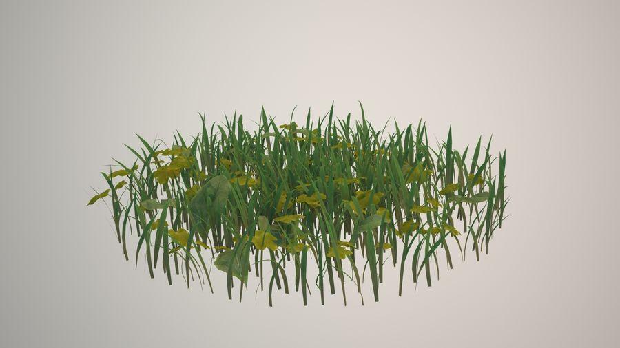 Gras voor het milieu royalty-free 3d model - Preview no. 1