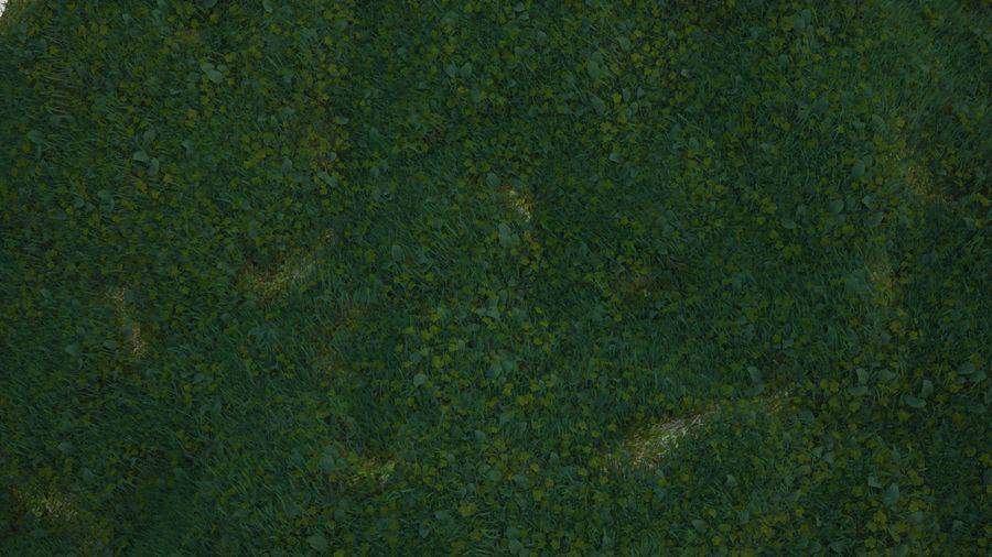 Gras voor het milieu royalty-free 3d model - Preview no. 5