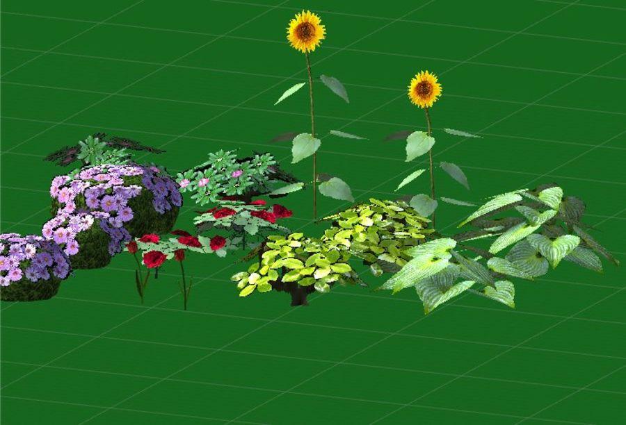 Fleurs et plantes de jardin royalty-free 3d model - Preview no. 7