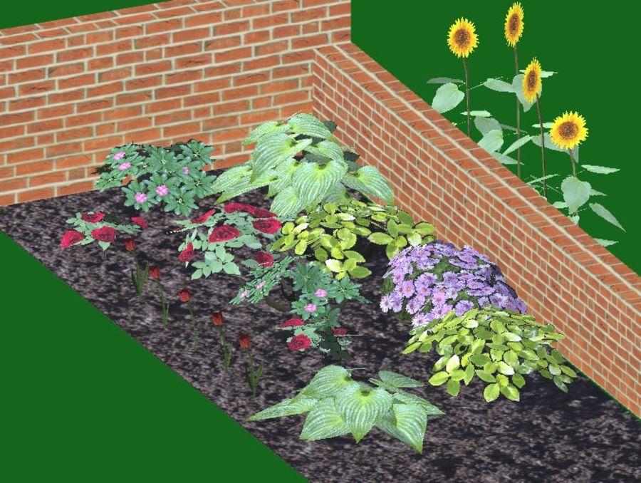Fleurs et plantes de jardin royalty-free 3d model - Preview no. 3