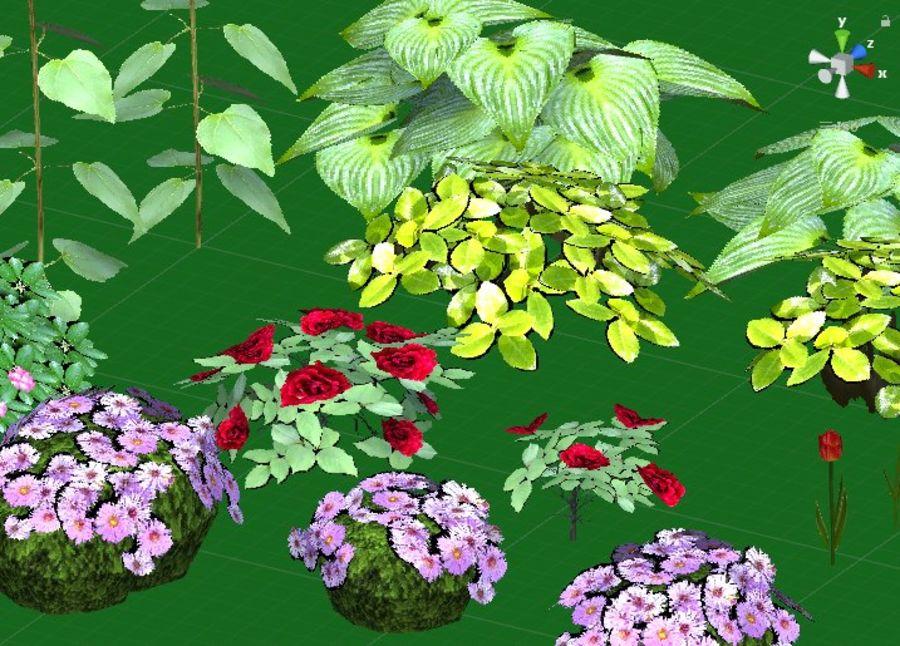Fleurs et plantes de jardin royalty-free 3d model - Preview no. 8