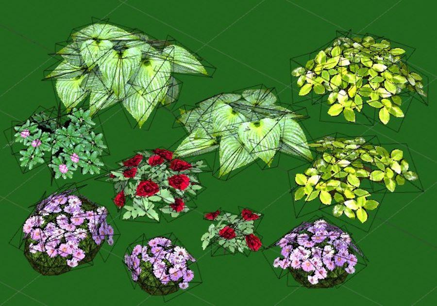 Fleurs et plantes de jardin royalty-free 3d model - Preview no. 5