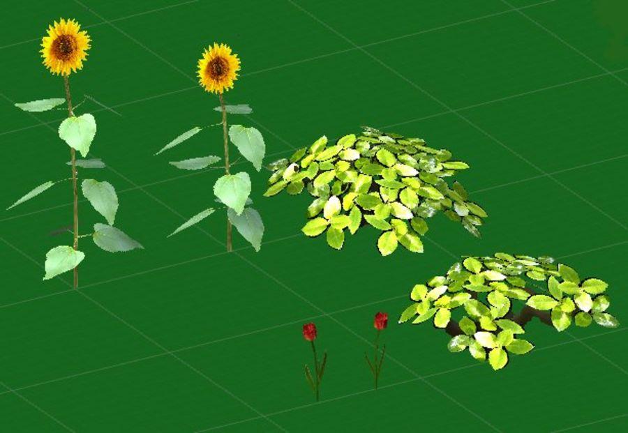 Fleurs et plantes de jardin royalty-free 3d model - Preview no. 6