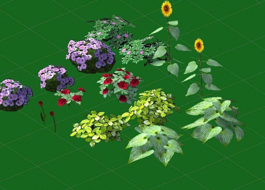 Fleurs et plantes de jardin royalty-free 3d model - Preview no. 9