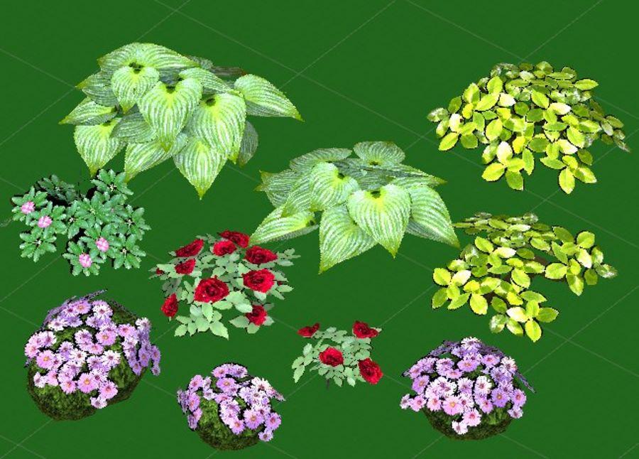 Fleurs et plantes de jardin royalty-free 3d model - Preview no. 4