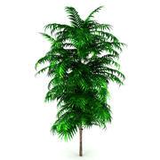 Куст дерева 3d model