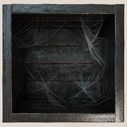 货架蜘蛛网 3d model