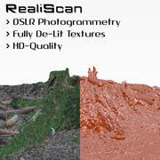 RealiScan fotogrammetrie kleine stronk 3d model