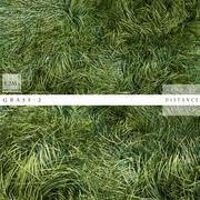 grass 2 3d model
