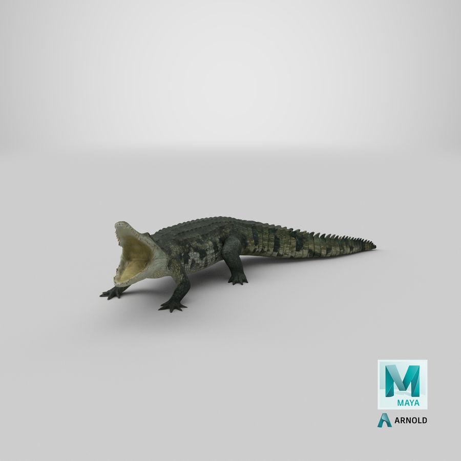 Crocodile Attacks Pose Modèle 3D royalty-free 3d model - Preview no. 27