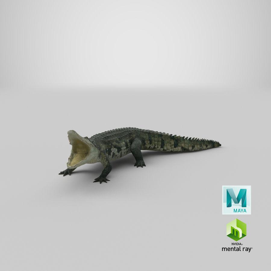 Crocodile Attacks Pose Modèle 3D royalty-free 3d model - Preview no. 28