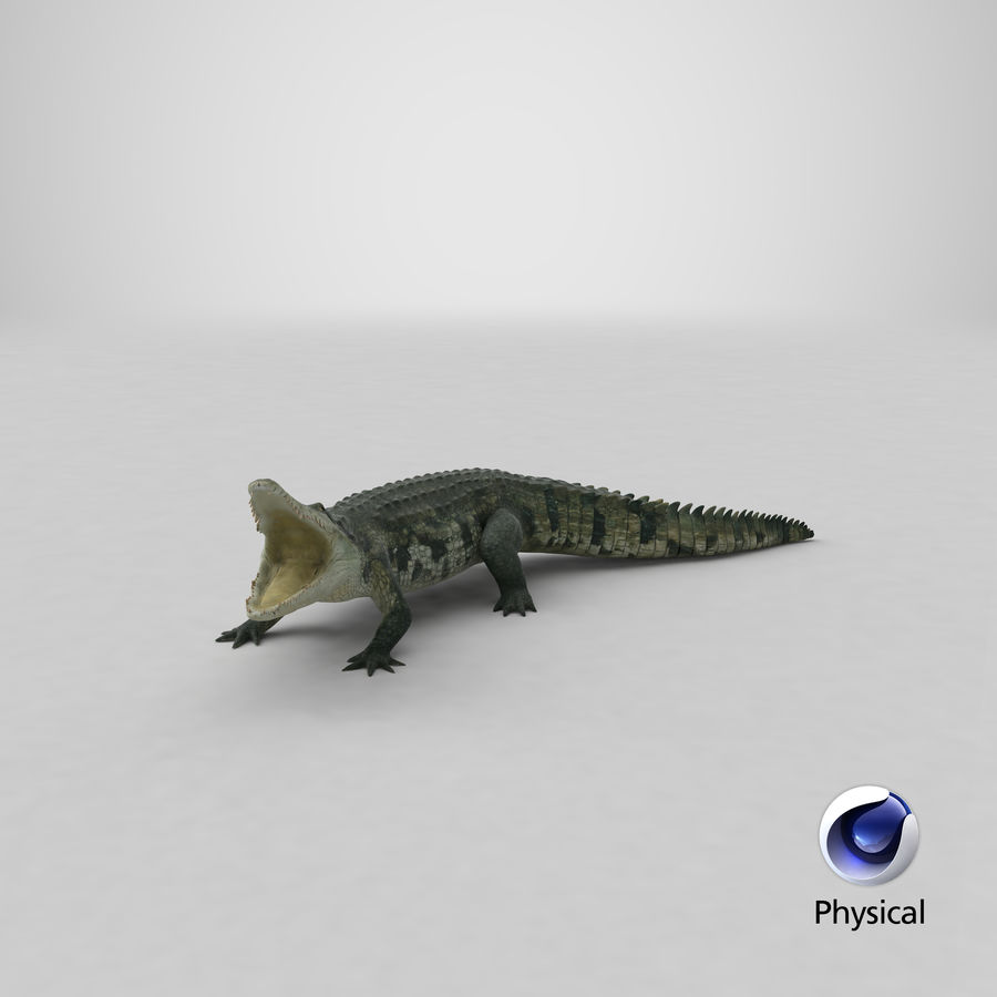 Crocodile Attacks Pose Modèle 3D royalty-free 3d model - Preview no. 20