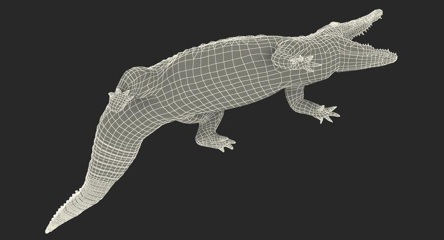 Crocodile Attacks Pose Modèle 3D royalty-free 3d model - Preview no. 19