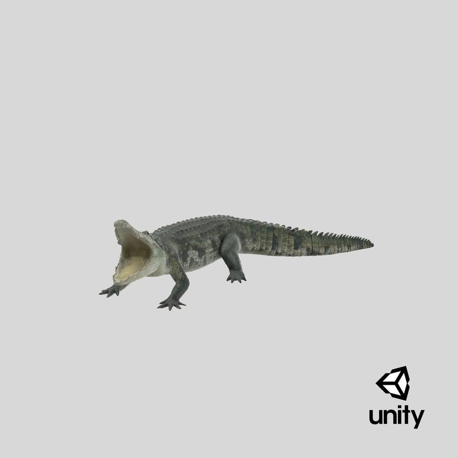 Crocodile Attacks Pose Modèle 3D royalty-free 3d model - Preview no. 22