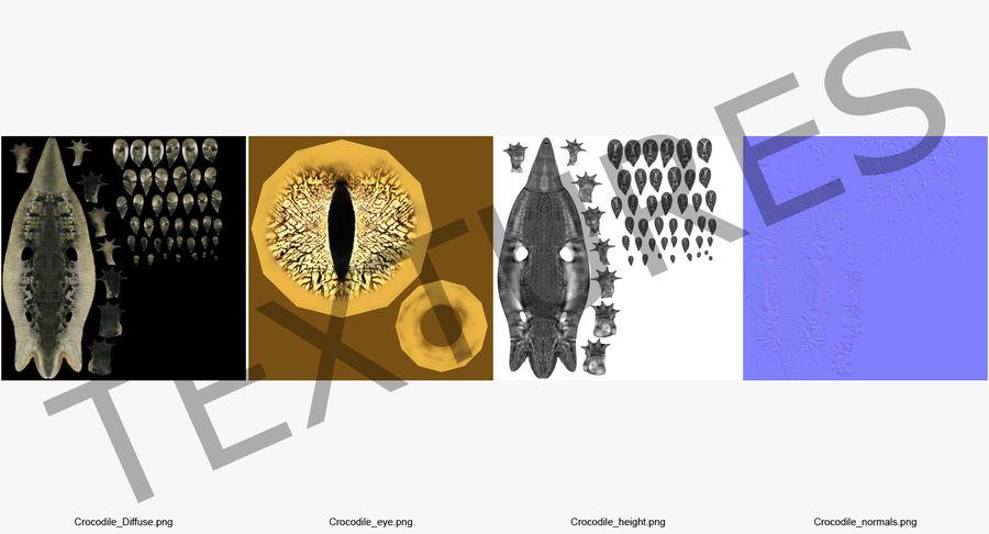 Crocodile Attacks Pose Modèle 3D royalty-free 3d model - Preview no. 11