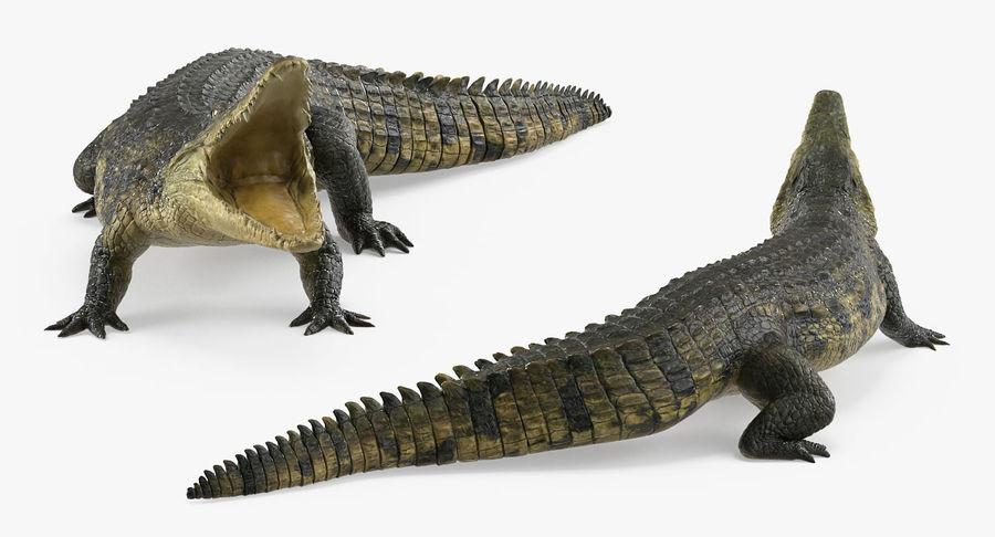 Crocodile Attacks Pose Modèle 3D royalty-free 3d model - Preview no. 3