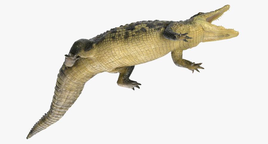 Crocodile Attacks Pose Modèle 3D royalty-free 3d model - Preview no. 8
