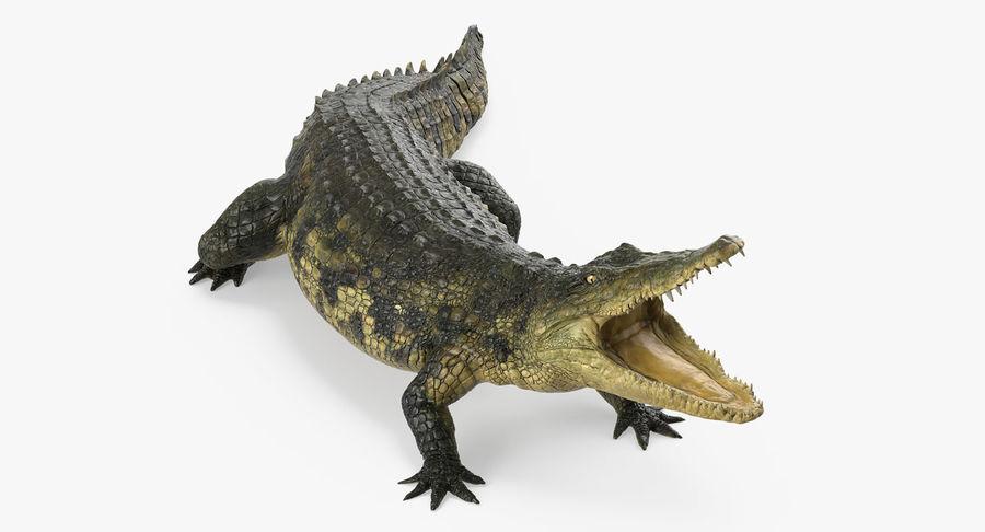 Crocodile Attacks Pose Modèle 3D royalty-free 3d model - Preview no. 2