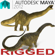 Apatosaurus Dinosaur Rigged for Maya 3d model