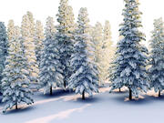 Frozen Forest HD Pack 3d model