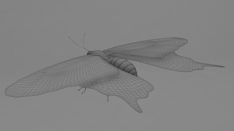 Vlinder royalty-free 3d model - Preview no. 5