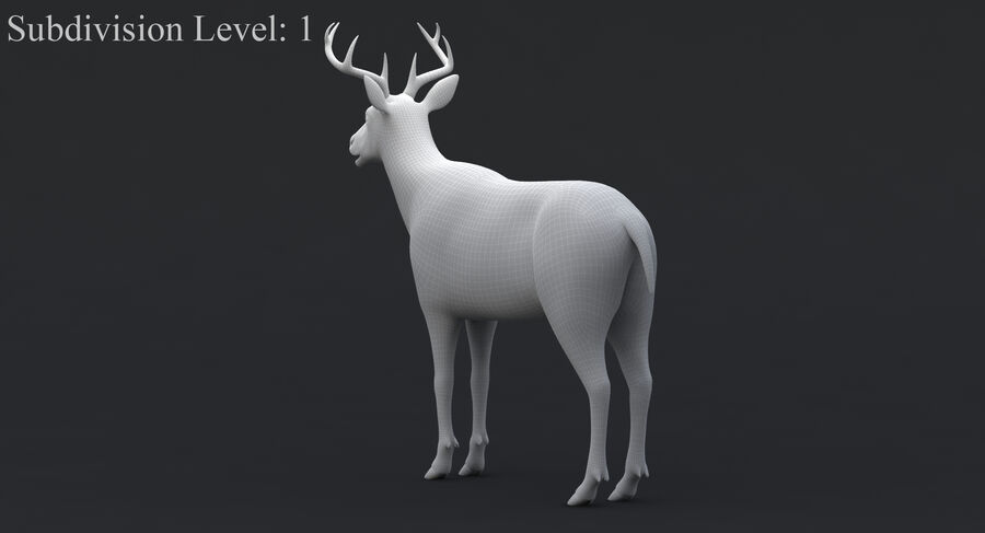 Hirsch royalty-free 3d model - Preview no. 14