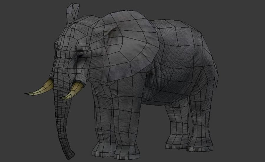 Afrikaanse olifant laag poly royalty-free 3d model - Preview no. 8