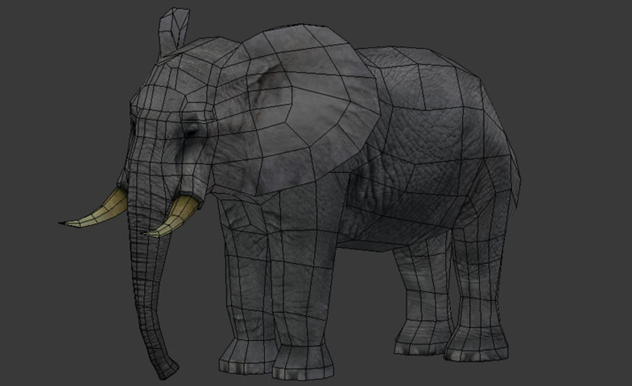 African Elephant Low Poly royalty-free 3d model - Preview no. 8