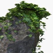 Bluszcz ze skałą 3d model