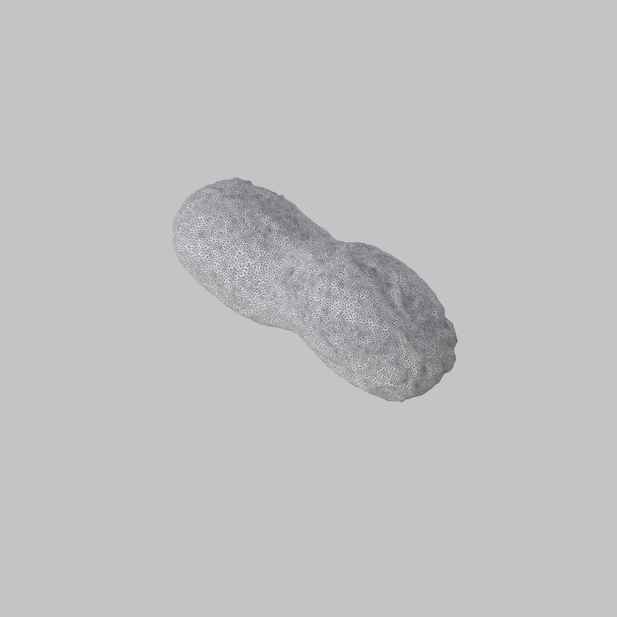 Peanut royalty-free 3d model - Preview no. 6