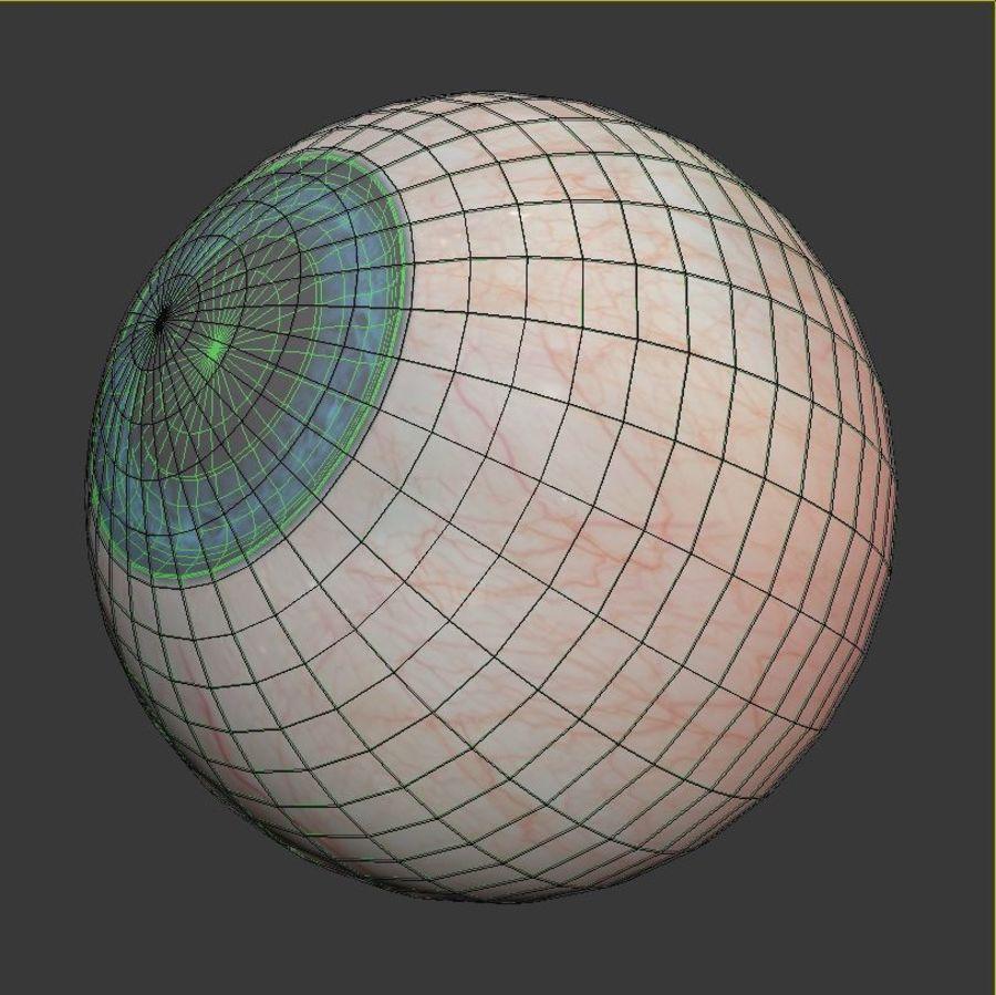 Анимированный человеческий глаз royalty-free 3d model - Preview no. 10