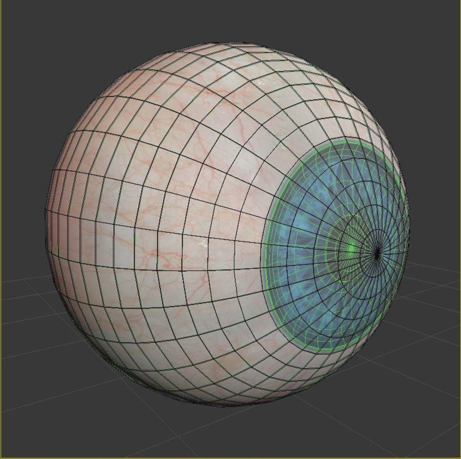 Анимированный человеческий глаз royalty-free 3d model - Preview no. 9