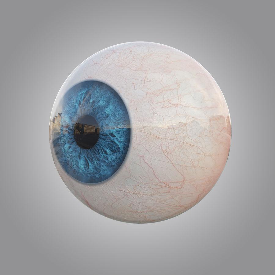 Анимированный человеческий глаз royalty-free 3d model - Preview no. 2