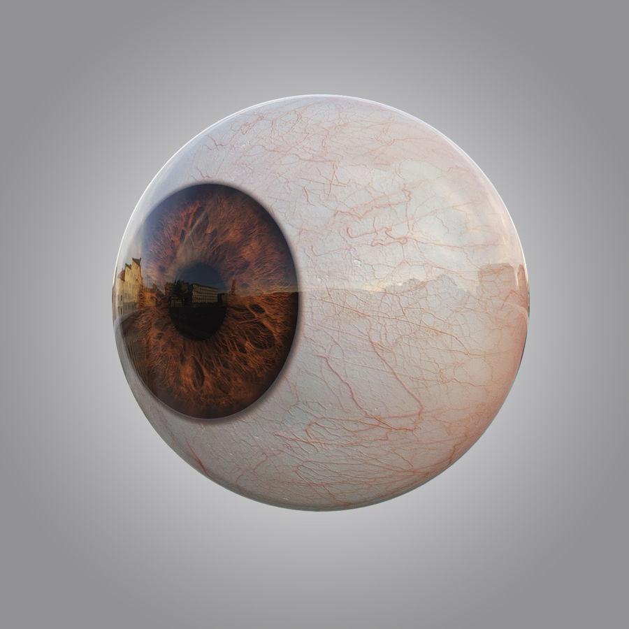 Анимированный человеческий глаз royalty-free 3d model - Preview no. 3