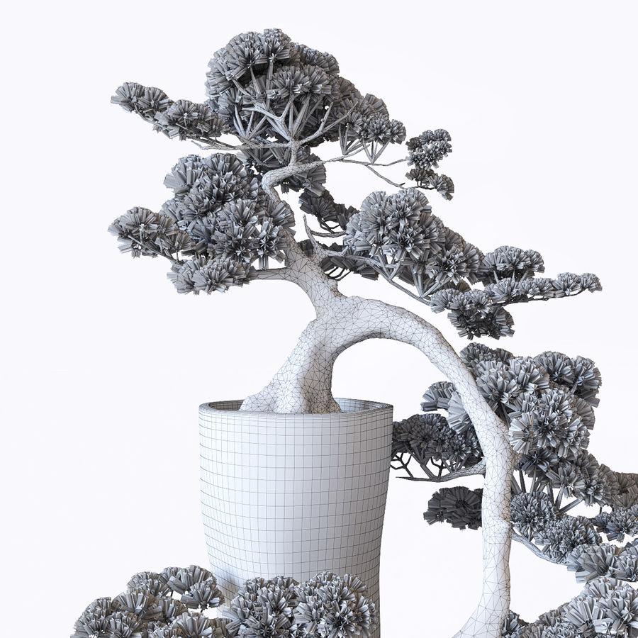 bonsaï royalty-free 3d model - Preview no. 7