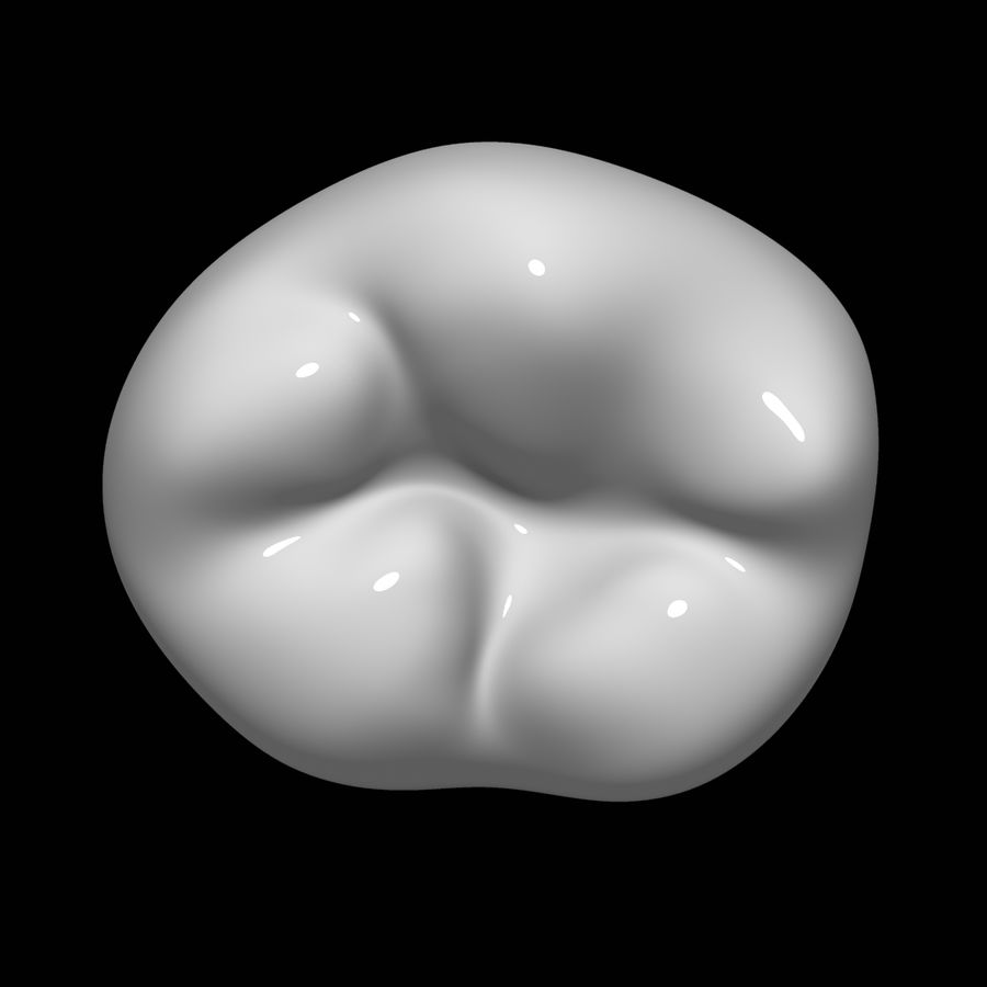 Tooth molar royalty-free 3d model - Preview no. 6