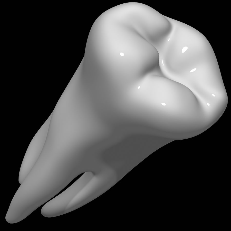 Tooth molar royalty-free 3d model - Preview no. 8