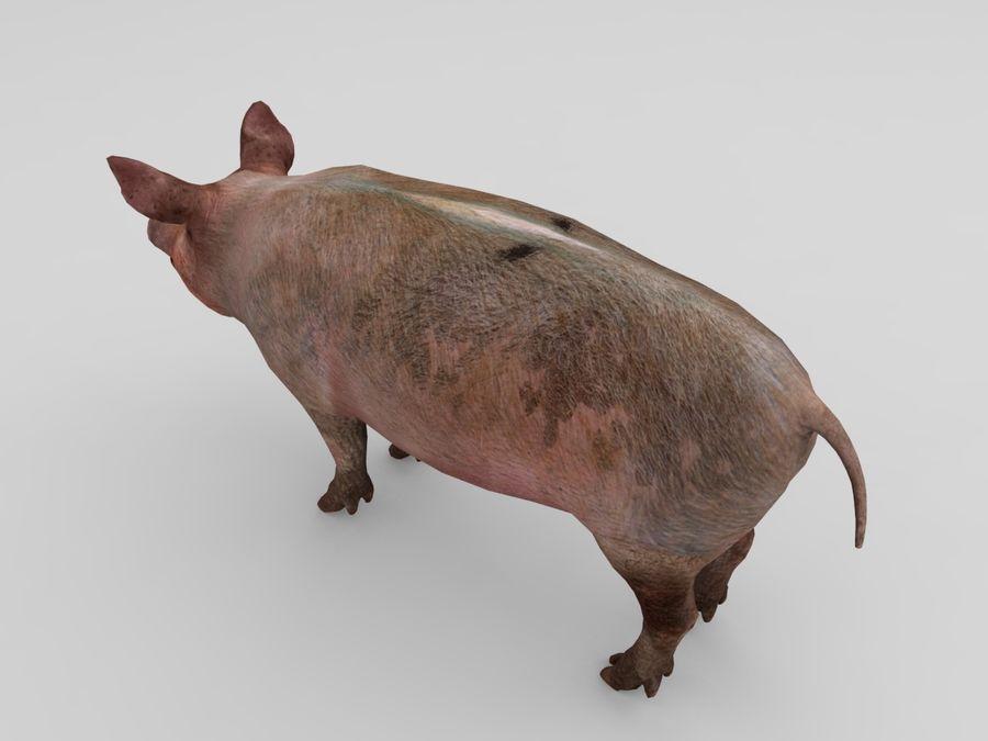 modèle prêt de jeu de basse poly porc royalty-free 3d model - Preview no. 10