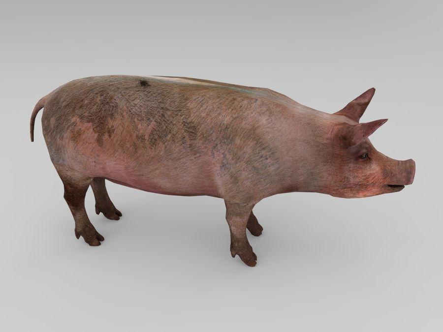 modèle prêt de jeu de basse poly porc royalty-free 3d model - Preview no. 5