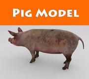 modelo de juego listo bajo de cerdo poli modelo 3d