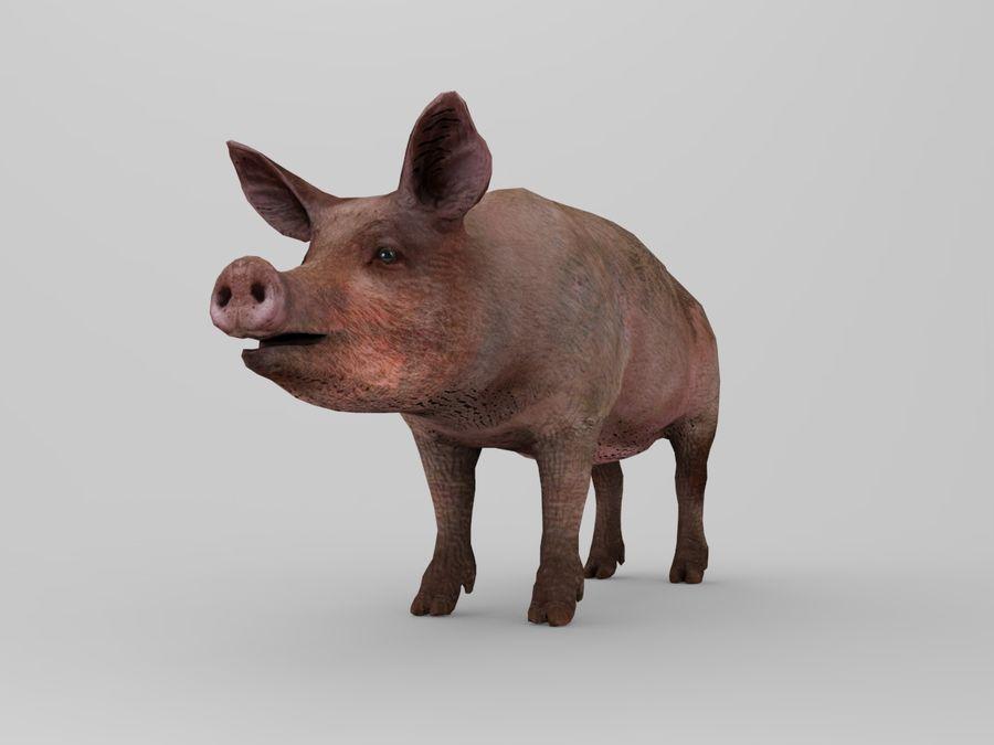 modèle prêt de jeu de basse poly porc royalty-free 3d model - Preview no. 8