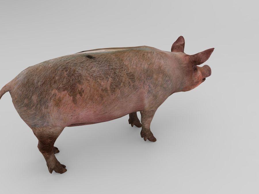 modèle prêt de jeu de basse poly porc royalty-free 3d model - Preview no. 4