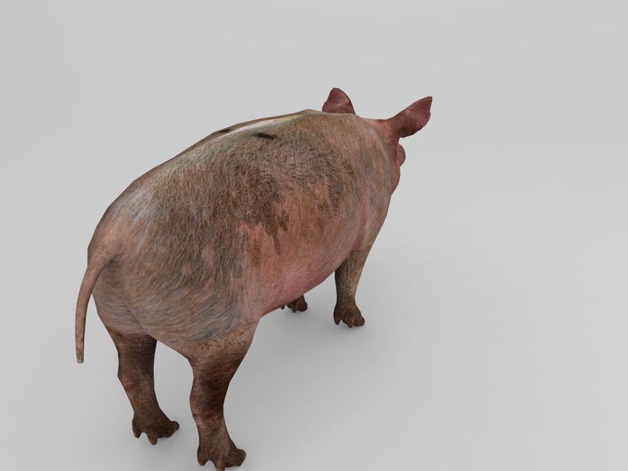 modèle prêt de jeu de basse poly porc royalty-free 3d model - Preview no. 3