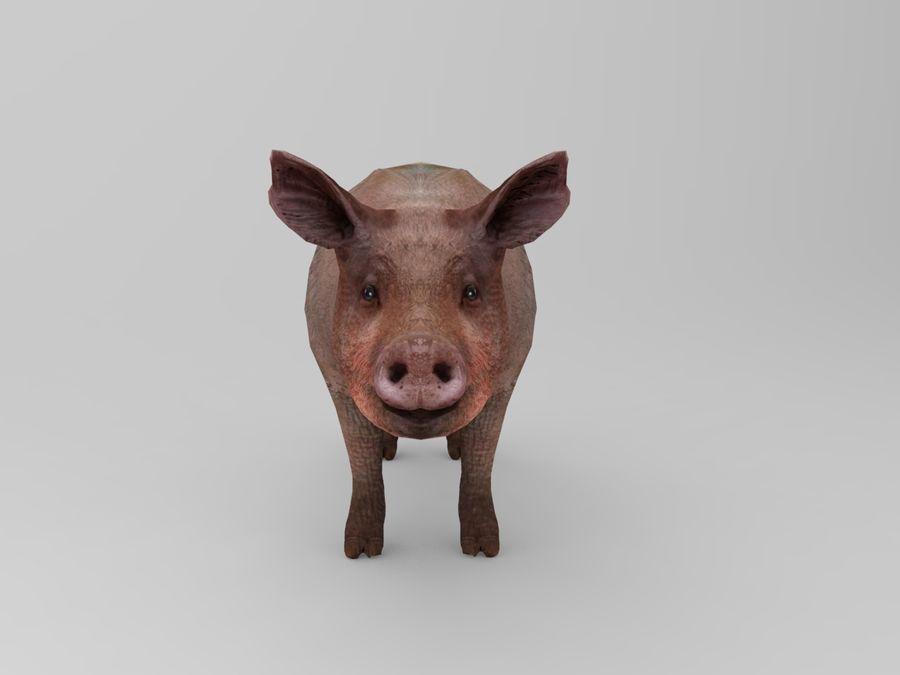 modèle prêt de jeu de basse poly porc royalty-free 3d model - Preview no. 7