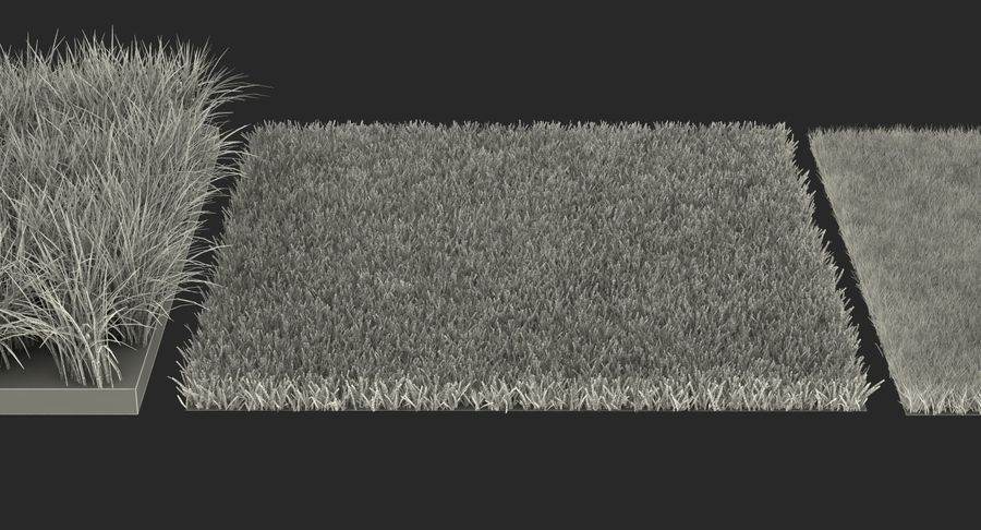 Grass Fields Collection 2 royalty-free 3d model - Preview no. 13