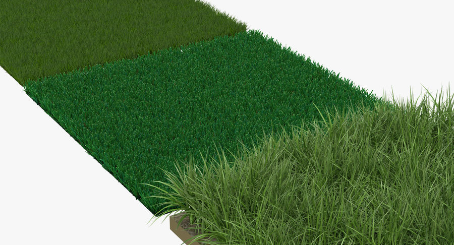 Grass Fields Collection 2 royalty-free 3d model - Preview no. 4