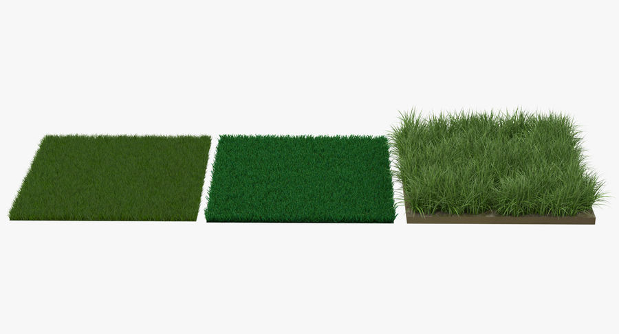 Grass Fields Collection 2 royalty-free 3d model - Preview no. 3